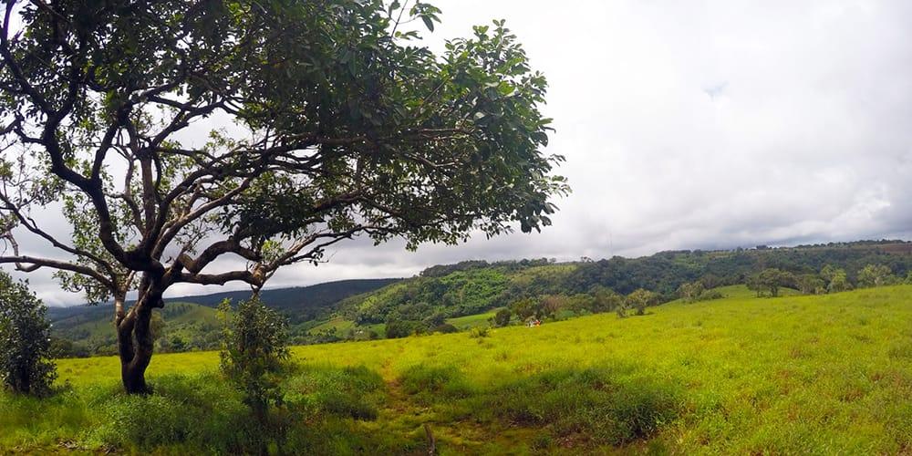 Exploring the Mondulkiri Elephant Sanctuary & Town
