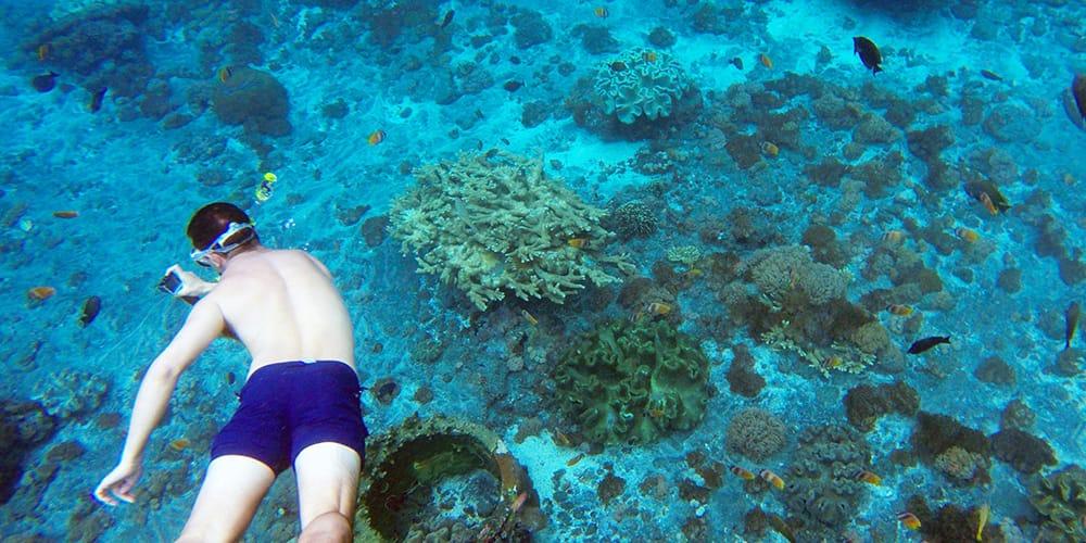 snorkeling in nusa lembongan cenigan penida