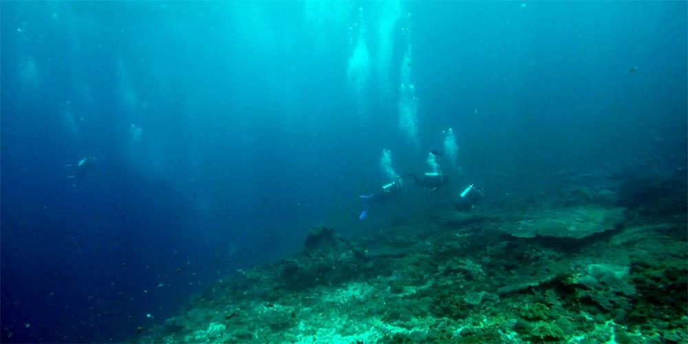 Failing the PADI Open Water Scuba Course in Bali