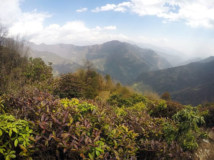Beautiful green flora line the hills on the way to Romailo Danda