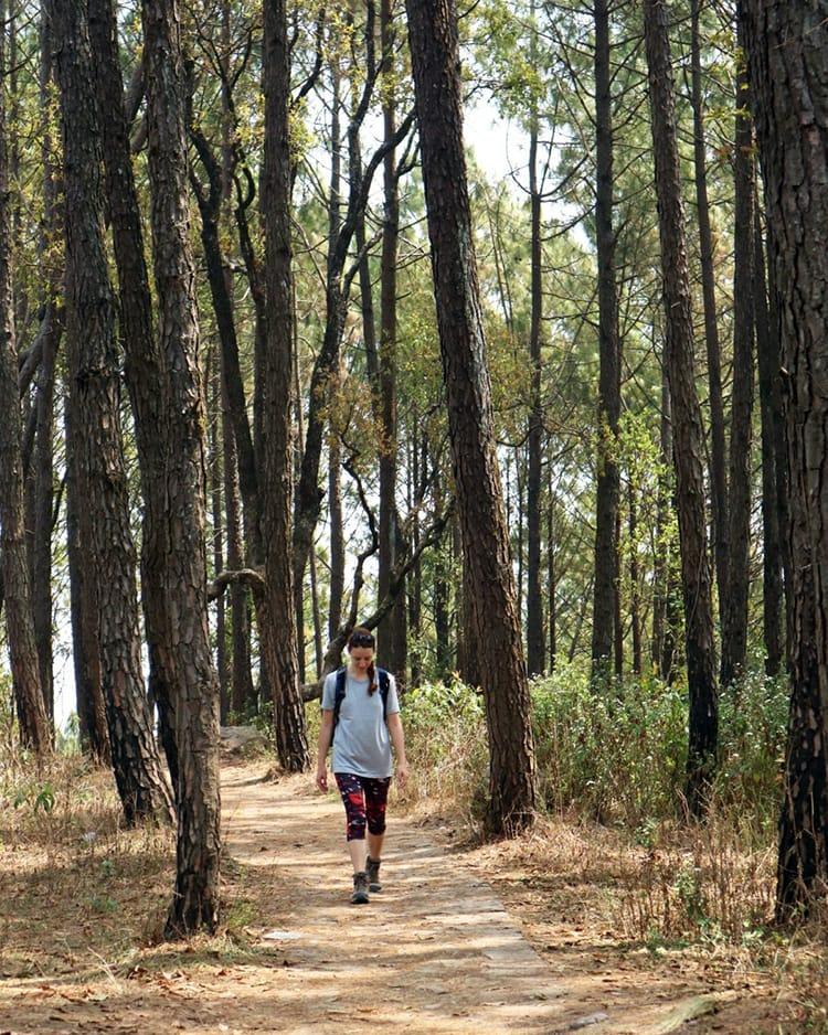 Michelle Della Giovanna from Full Time Explorer walks through Shreenagar Park