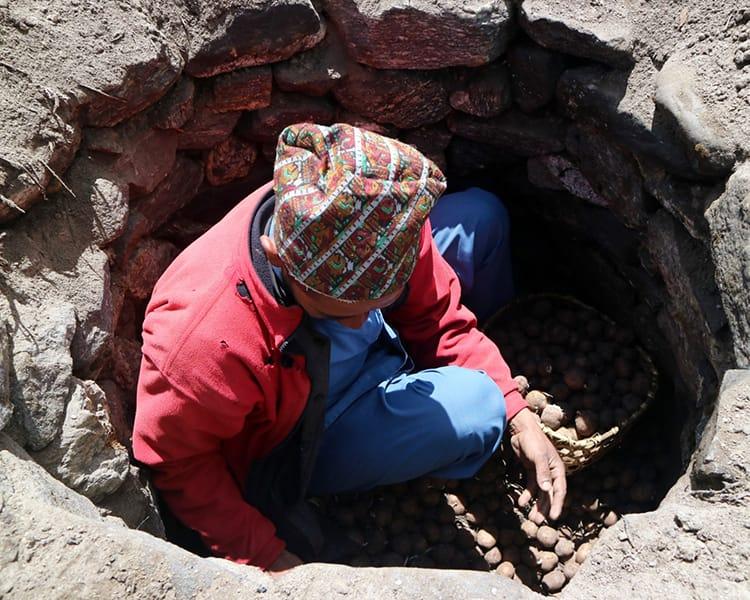 A man retrieves potatos from an outdoor cellar that acts as a refridgerator
