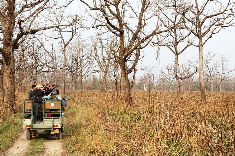 A Chitwan jungle safari jeep drives through the national park in Nepal