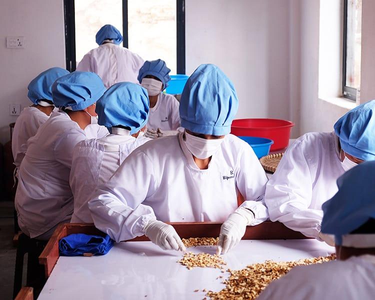 Workers at Sanchai peel peanut