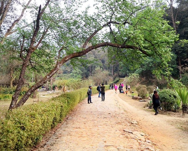 Visitors walk down the main path of Godawari Botanical Garden in the winter