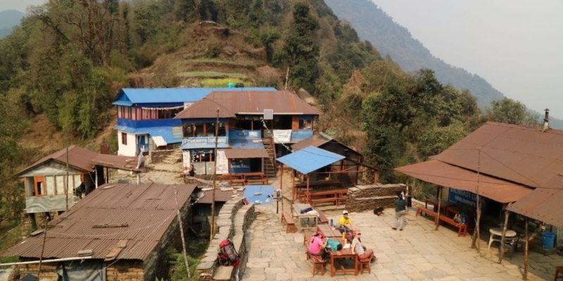 Pittam Deurali Mardi Himal Trekking Guide Nepal