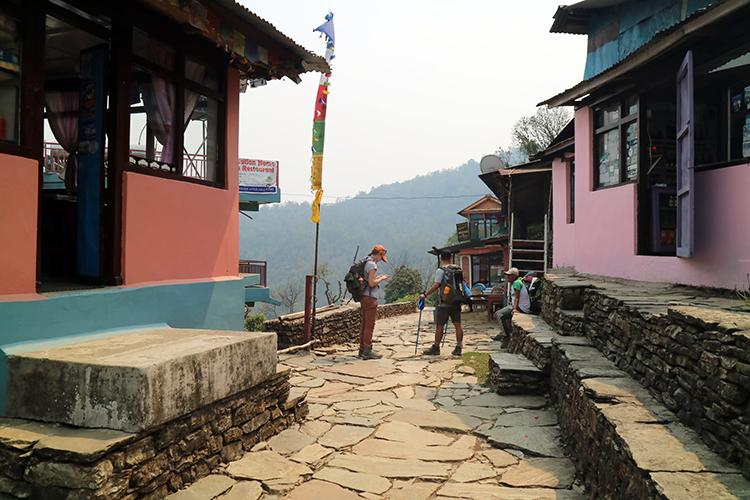 Two trekkers discuss where to go next along the Mardi Himal Trek