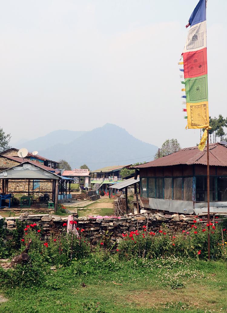 A Tibetan prayer flag dances in the wind over Pothana